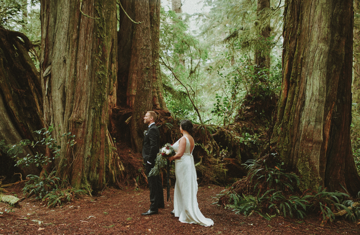 First look in a tree grove on Vancouver Island, British Columbia